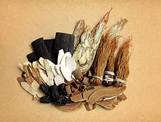 traditional_chinese_herbs2.jpg