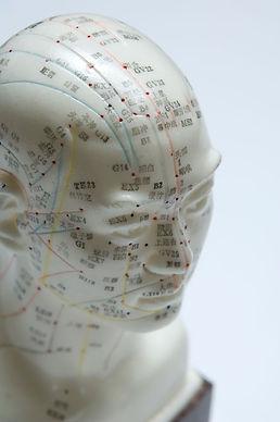 Meridians_head.jpg