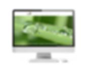 website-Zencare.png