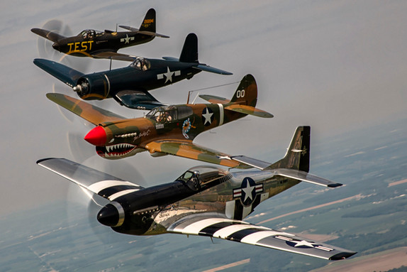 Warbirds in Formation