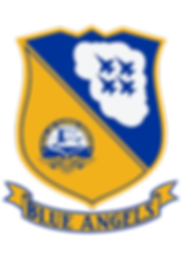 543px-Blue_Angels_Insignia.svg.png