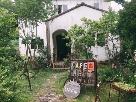 20袋限定のコーヒー豆販売キャンペーンスタート!