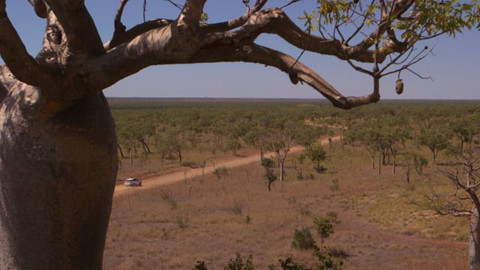 Remote Aboriginal Communities