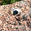 Thumbnail: Sterling Silver-Men's Mountain Ring