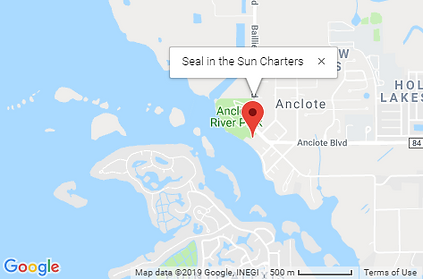 Google Map Seal in the Sun Charter