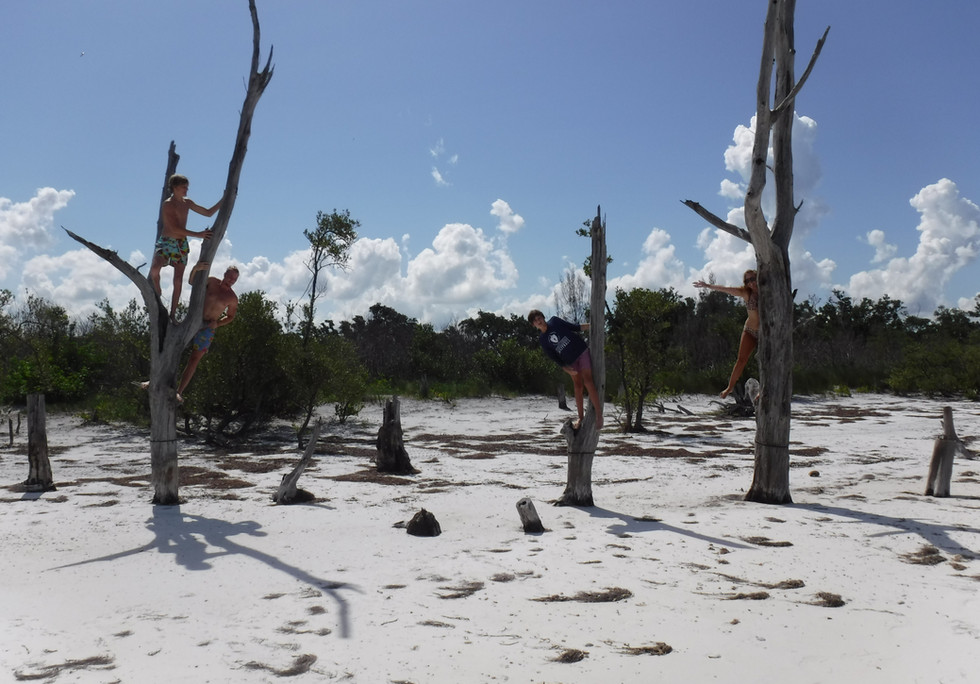 Island hopping st. pete