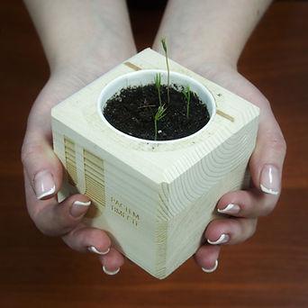 Uni_cube.jpeg