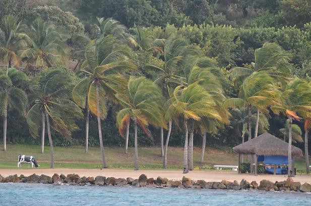 Where Is Jeffery Epstein Island