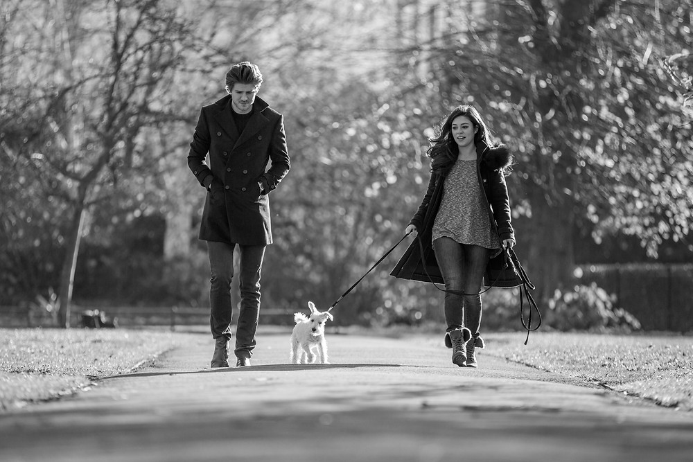 Dog photography in London. Charley the Miniature Schnauzer walking with his owners