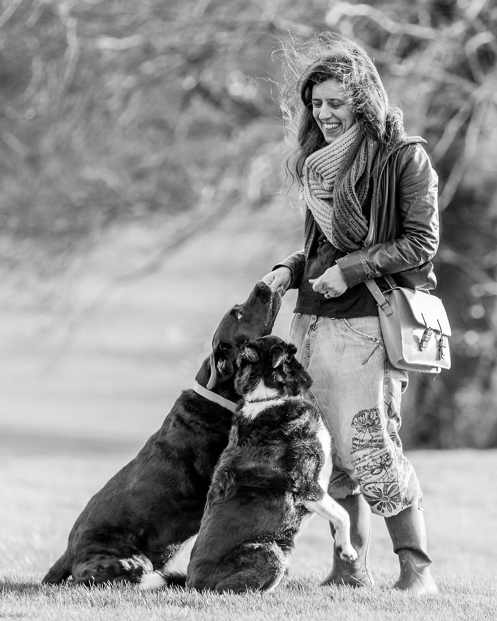 Dog photography in London. Isaac the black Labrador and Flynn the Border Collie with their owner