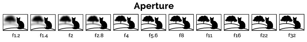 Aperture Ian McGlasham.jpg