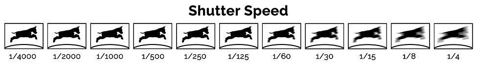 Shutter Speed Ian McGlasham.jpg