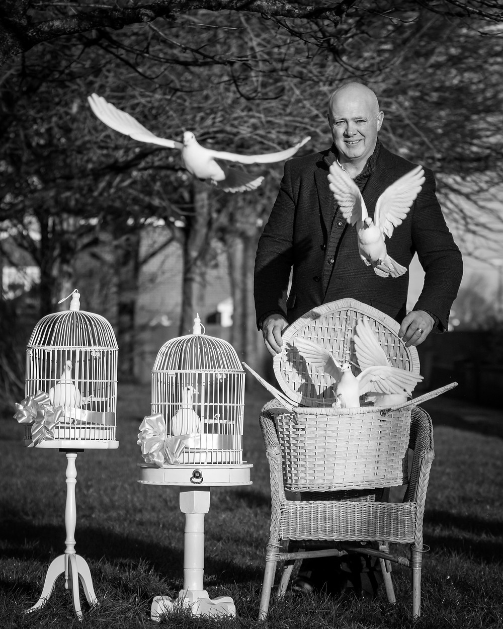 Animal photography in the UK. White dove release