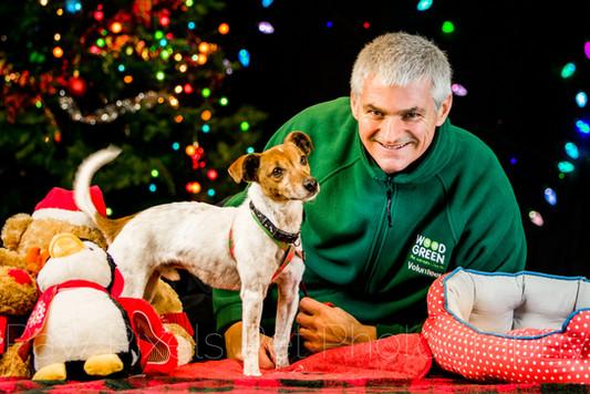 Wood Green, The Animal Charity