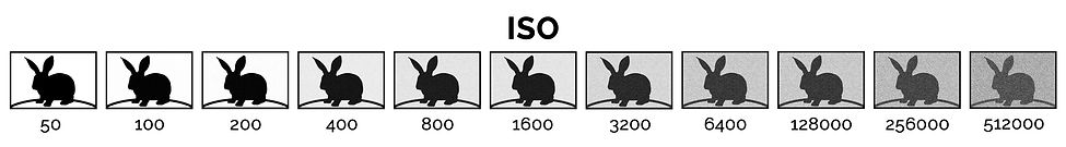 ISO Ian McGlasham.jpg