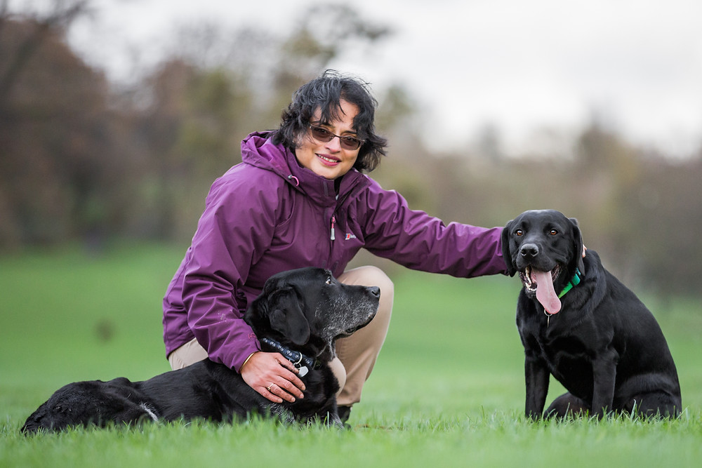 Dog photography in London. Logi and Nero the labradors with their owner.
