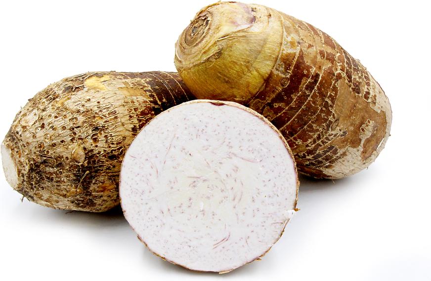 Malanga Coco