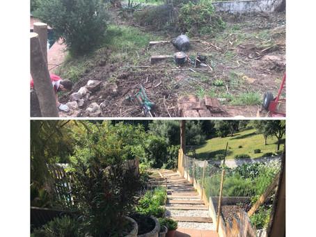 Before & After - Kitchen garden