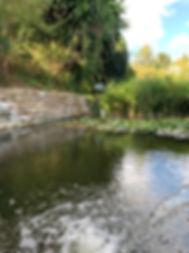 Pond at La Tierra.jpg