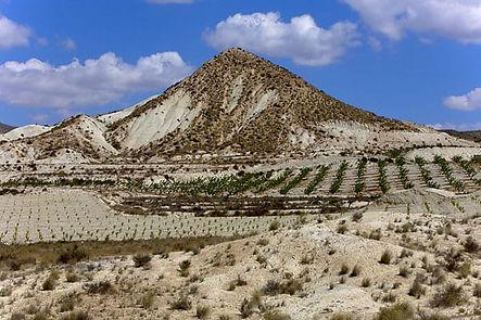 Dry Southern Spain.jpg