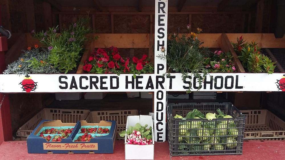 Cashton Produce Stand
