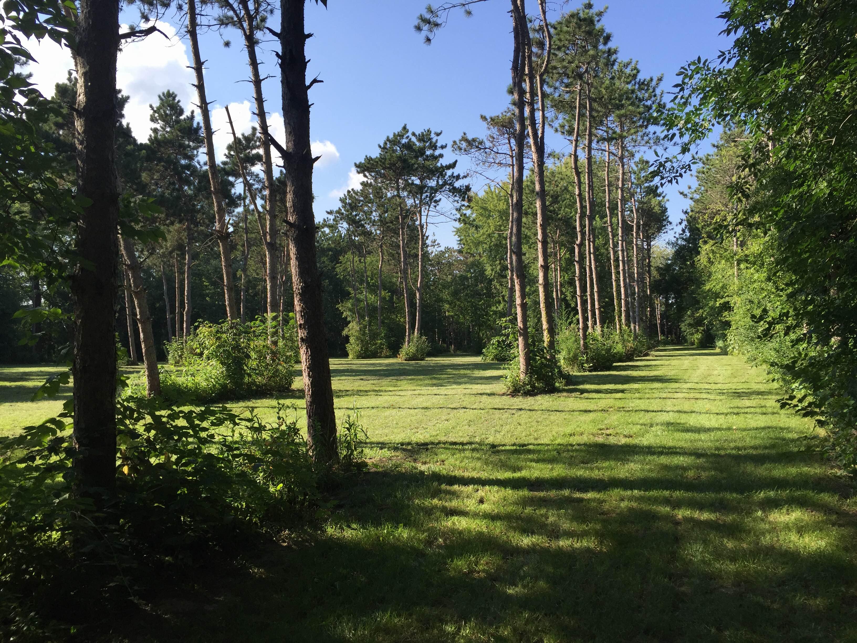 Disc Golf Park