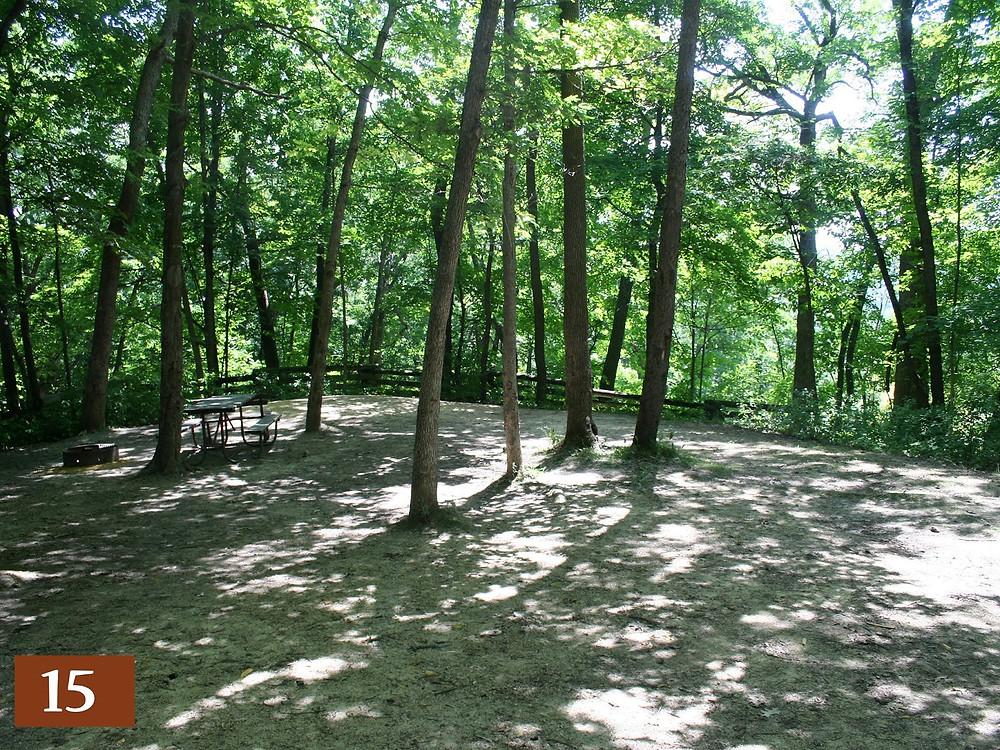campsite 15 at wildcat mountian in cashton