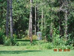 Historic Pine Park