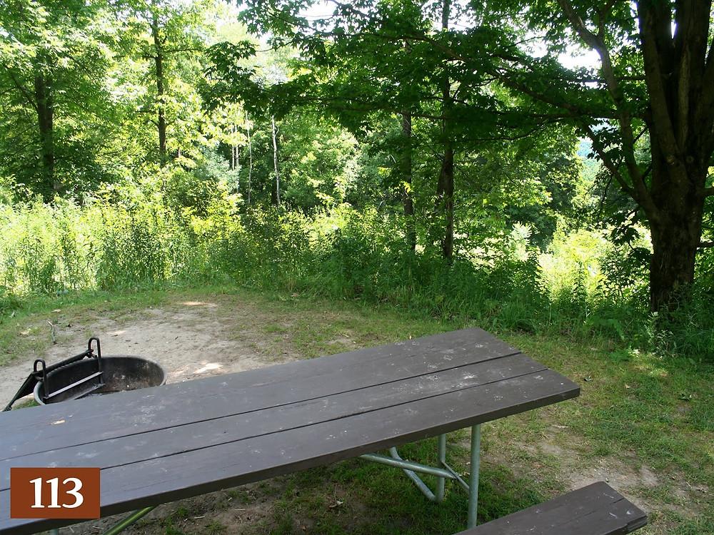 camping around cashton wi wildcat
