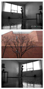Triptych #5.jpg