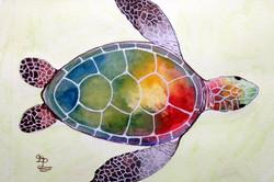 2018-112 gloria pattinson turtle .JPG