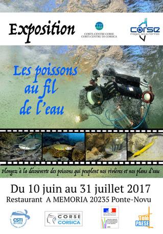 Exposition Corse Images Sous-Marines et CPIE A Rinacita. Du 10 Juin au 31 Juillet Restaurant A Memor