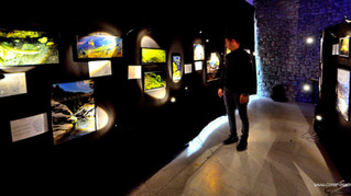 Exposition Corse Images Sous Marines a Corte