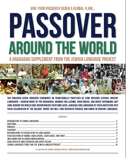 JLP Haggadah supplement cover.png