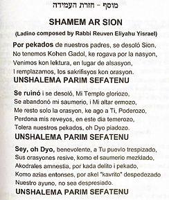 shamen har tzion 1.jpg