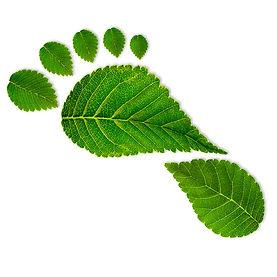 Carbon_footprint_Web.jpg