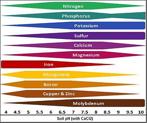 Soil-pH.jpg