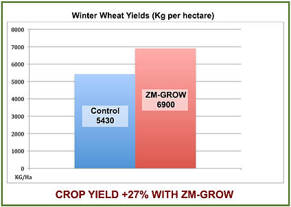 winter wheat trial chart.jpg