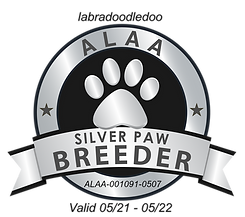 Labradoodledoo Silver Paw 2021.png