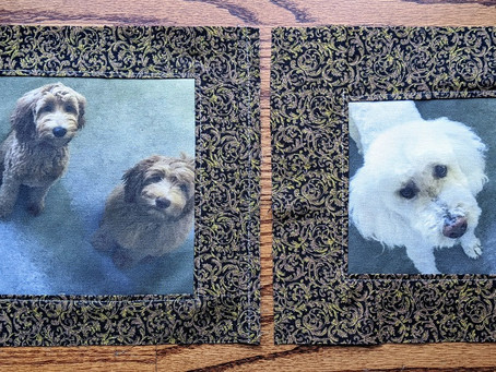New quilt squares !!