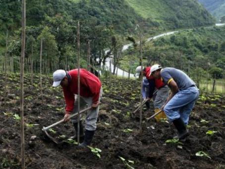 Un paso hacia adelante en el proceso hacia una Declaración de la ONU sobre los Derechos de Campesina