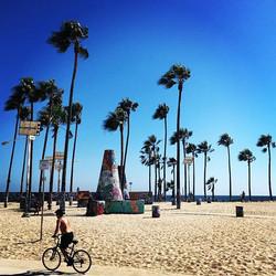 #venicebeach #cali #california #amtrak #amtrakresidency #travel #beach #travelgram