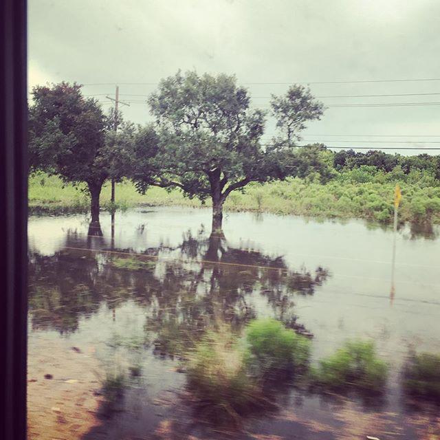 #Flooding covers a road in #jennings, #jeffersondavisparish, #louisiana
