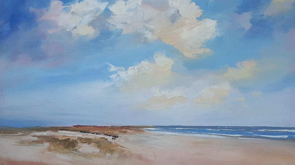 Midsummer in the dunes