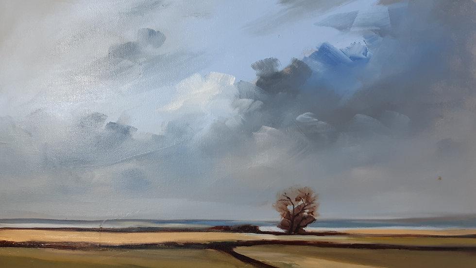 Norfolk Landscape # 2