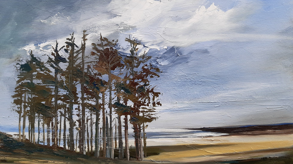 Newborough warren with Scots pines