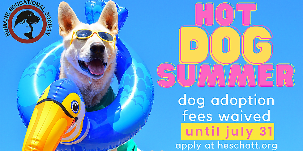 Hot Dog Summer Adoption Event