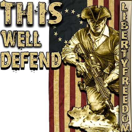 flag this well defend Libery Freedomfron