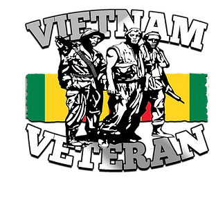 for vietnam vet back.png