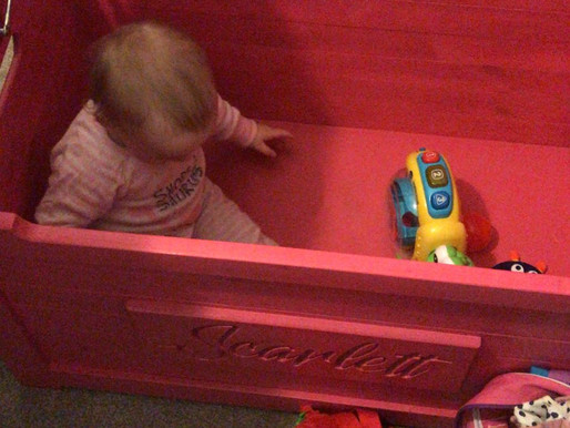 Pink Toy box update